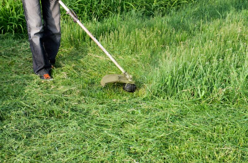 Application trimmers. Mowing green grass using a fishing line trimmer. Mowing green grass using a fishing line trimmer. Application trimmers royalty free stock photo