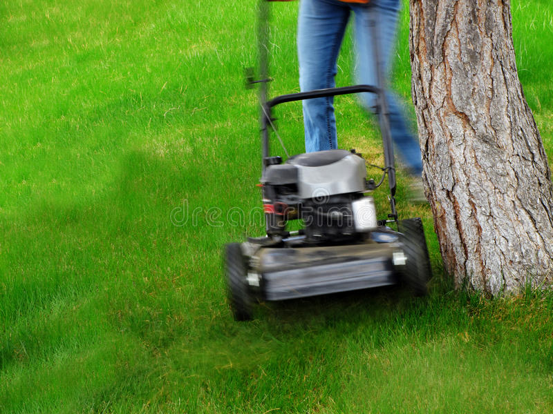 Mowing Lawn Grass. Young Girl Mowing green grass lawn with push mower royalty free stock photos