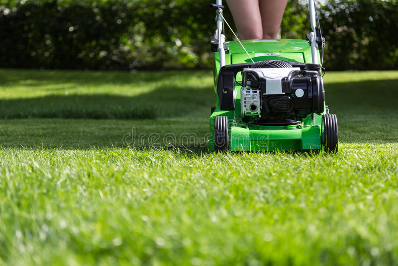Mowing the lawn. stock photo