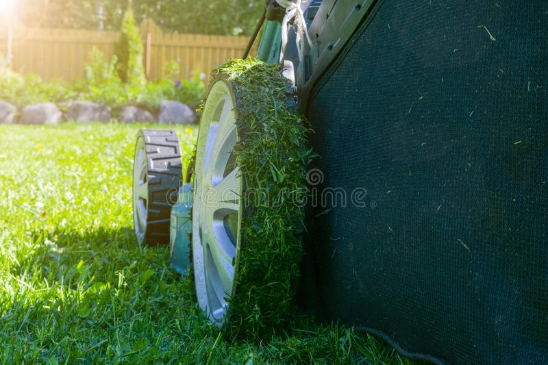 Mowing lawns. Lawn mower on green grass. Mower grass equipment. Mowing gardener care work tool. Close up view. Sunny day. Soft lig. Htning royalty free stock photography