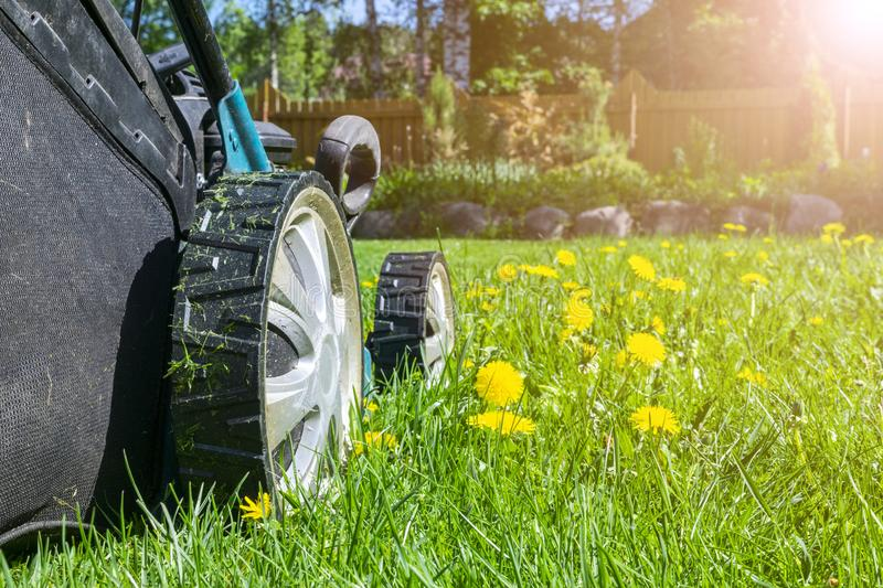 Mowing lawns. Lawn mower on green grass. Mower grass equipment. Mowing gardener care work tool. Close up view. Sunny day. Soft lig stock photos