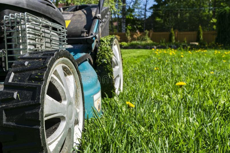 Mowing lawns, Lawn mower on green grass, mower grass equipment, mowing gardener care work tool, close up view, sunny day. Soft lig royalty free stock photos