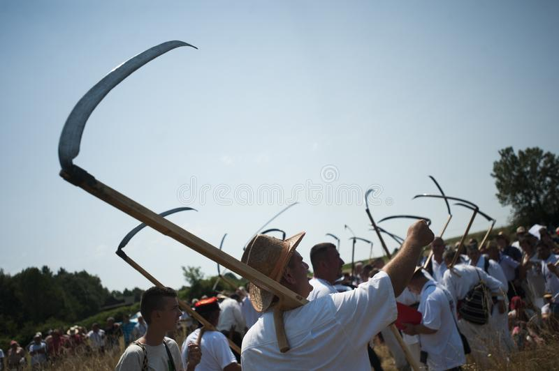Mowing on Rajac mountain. RAJAC, SERBIA - JULY 19, 2015: Mowing on Rajac mountain, traditional competiton in Central Serbia, near Ljig city, during which farmers stock images