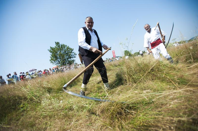Mowing on Rajac mountain. RAJAC, SERBIA - JULY 19, 2015: Mowing on Rajac mountain, traditional competiton in Central Serbia, near Ljig city, during which farmers stock photos