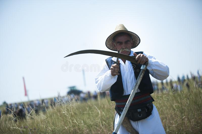 Mowing on Rajac mountain. RAJAC, SERBIA - JULY 19, 2015: Mowing on Rajac mountain, traditional competiton in Central Serbia, near Ljig city, during which farmers stock photo