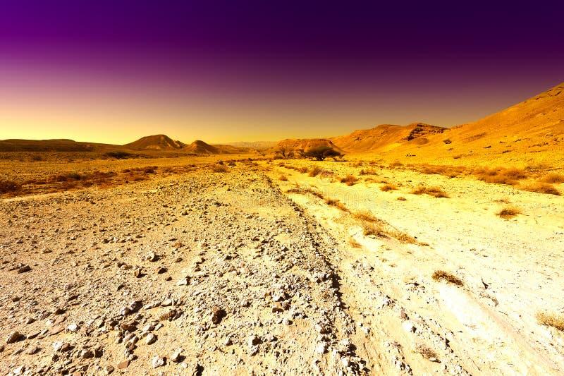 Moyen-Orient coloré au coucher du soleil images libres de droits