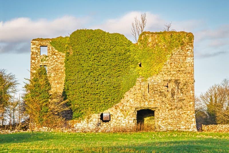 Moynekasteel in Ierland stock fotografie