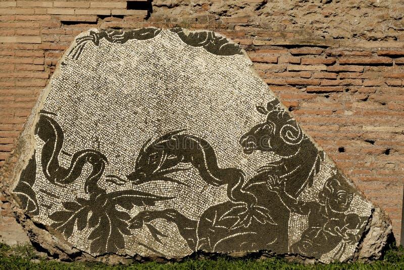 Mozaika przy ruinami skąpania Caracalla w Rzym zdjęcia royalty free