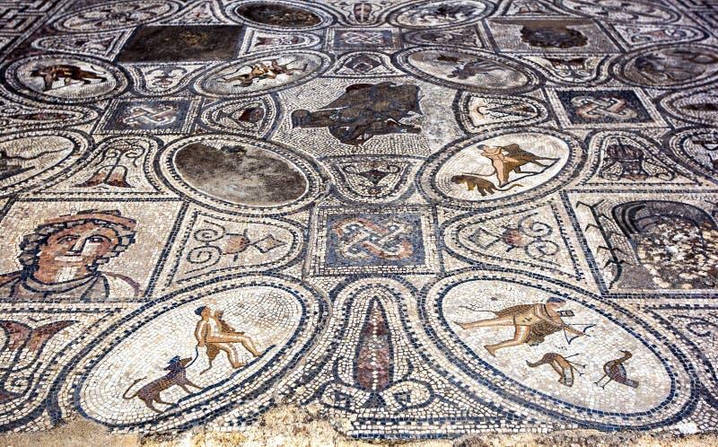 Mozaika przy Volubilis w Maroko wśrodku domu pracy Hercules Mozaika datuje od 1st wiek reklamy fotografia stock