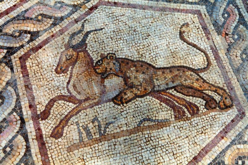 mozaika rzymska fotografia stock