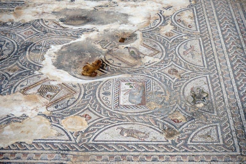 Mozaiki na podłoga obraz stock