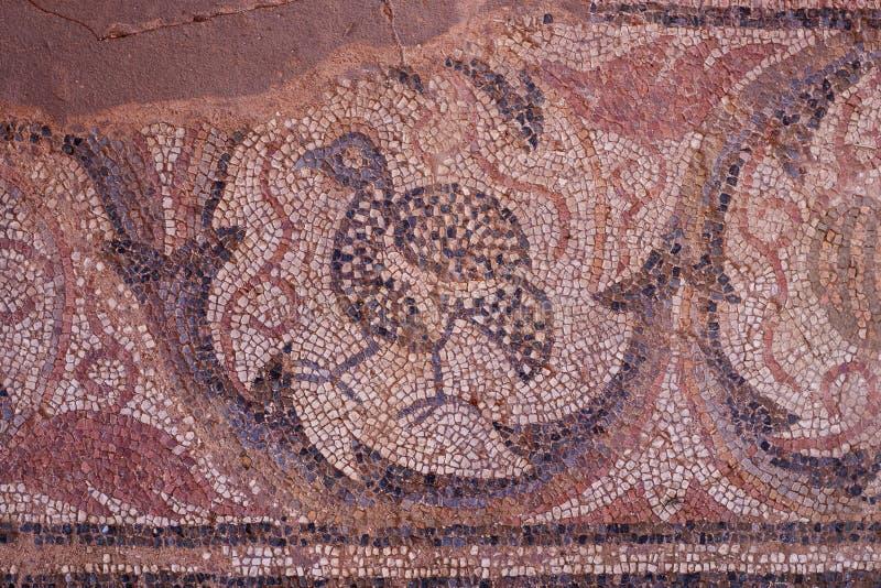 Mozaiki w ruinach wczesna Bizantyjska bazylika w Ohrid obrazy royalty free