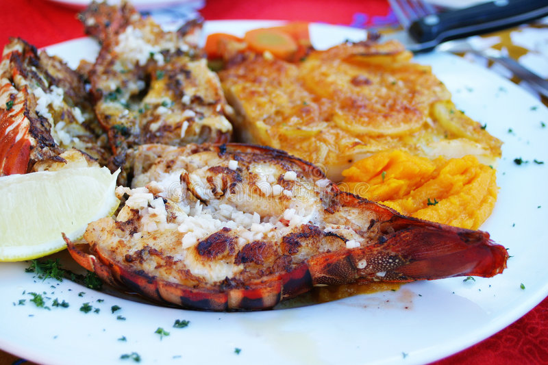 Download Mozambican Crayfish stock photo. Image of supper, lunch - 110114