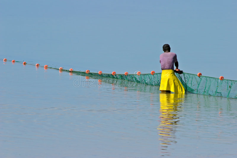Mozambican fisherman, Mozambique, southern Africa. A mozambican fisherman pulling a fishing net from the water, Mozambique, southern Africa royalty free stock photography