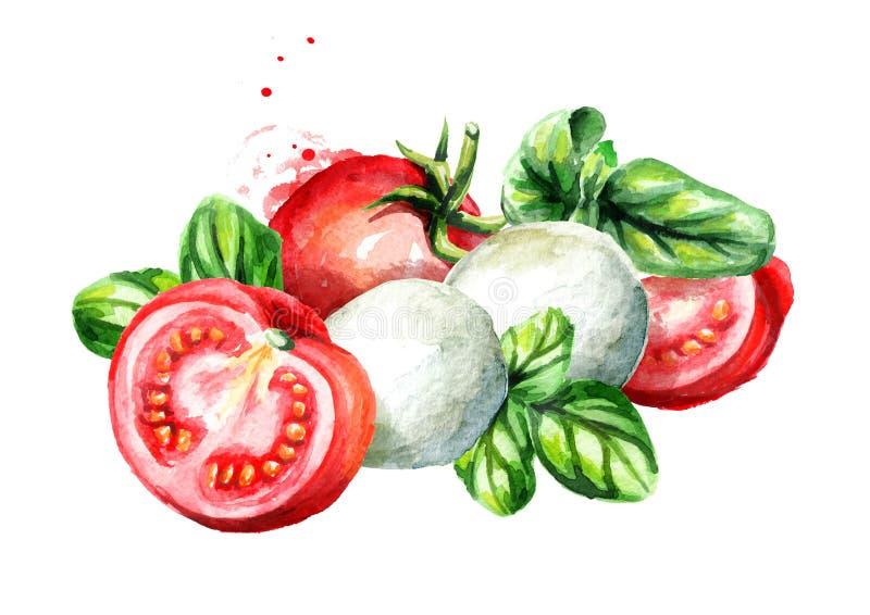 Mozarela con albahaca y tomates Ejemplo dibujado mano de la acuarela, aislado en el fondo blanco stock de ilustración