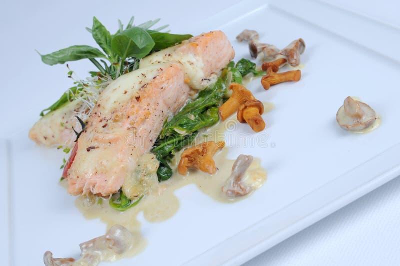 Mozarela de color salmón de cena fina imagen de archivo