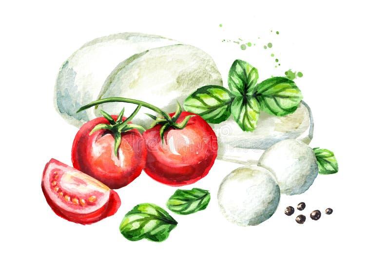 Mozarellakaas met Basilicum en tomaten Waterverfhand getrokken die illustratie, op witte achtergrond wordt geïsoleerd vector illustratie