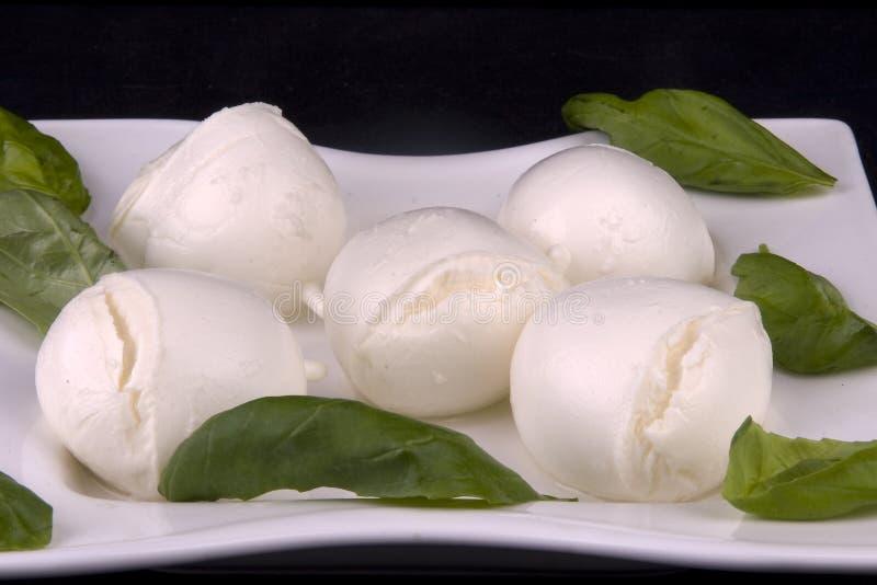 mozzarella сыра стоковое фото rf