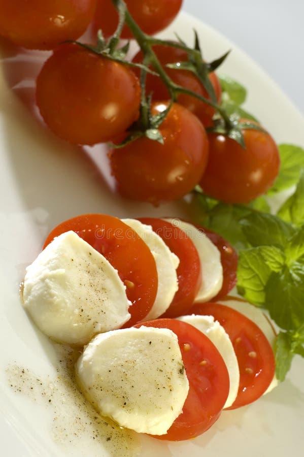 Download Mozzarella stock photo. Image of mediterranean, leaves - 2306272