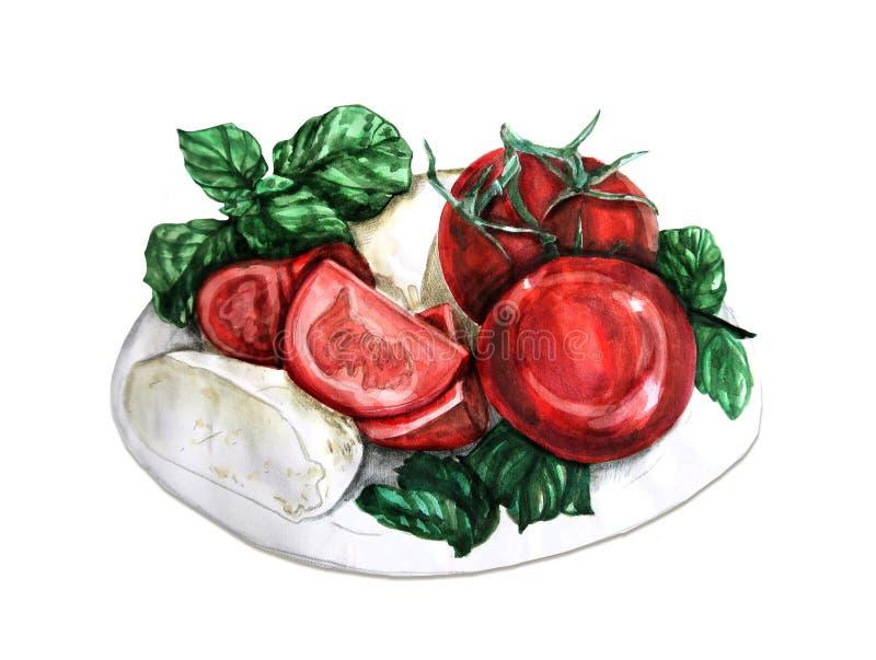 Mozzarella avec le basilic et les tomates Illustration tirée par la main d'aquarelle, d'isolement illustration de vecteur
