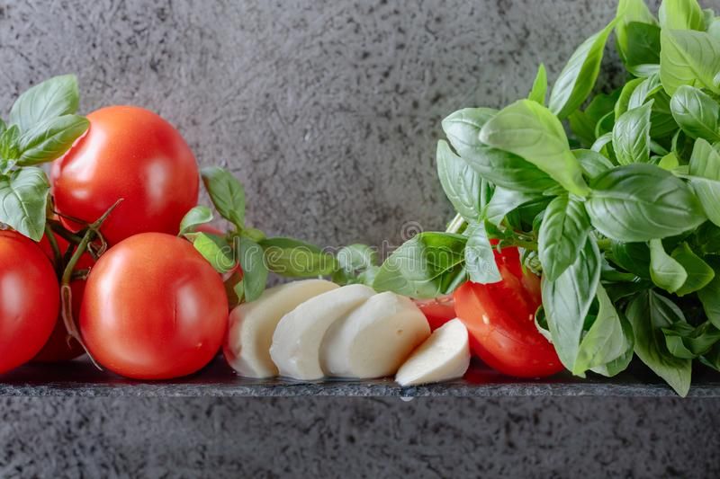 Mozzarella with basil and tomatoes. Copy space for your text royalty free stock image