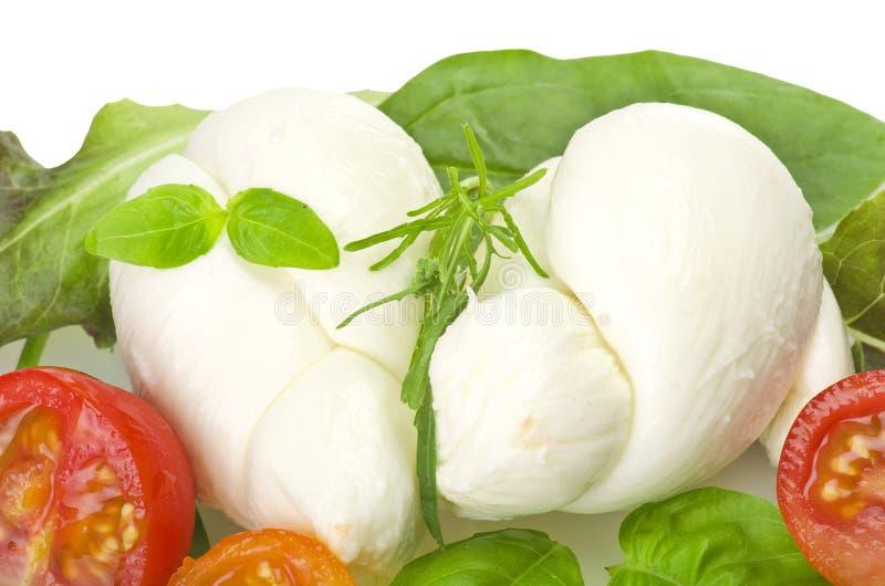 Mozzarella et tomates de salade photos stock