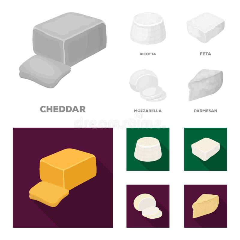 Mozzarella feta, cheddar, ricotta Olika typer av ost ställde in samlingssymboler i monokrom, symbol för lägenhetstilvektor vektor illustrationer