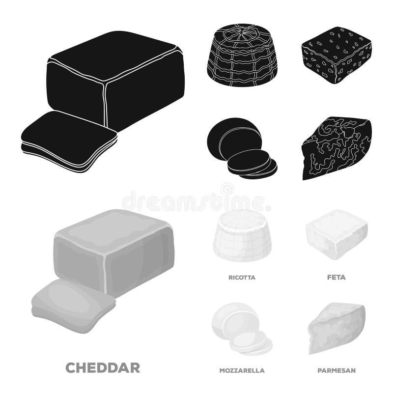 Mozzarella feta, cheddar, ricotta Olika typer av ost ställde in samlingssymboler i svart, monokrom stilvektor stock illustrationer