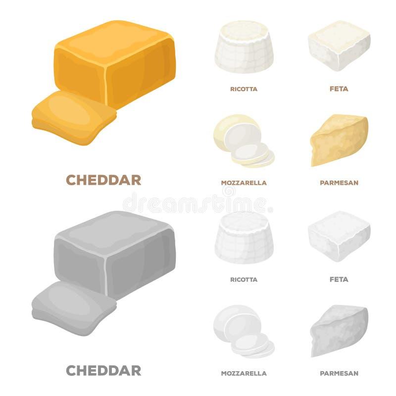 Mozzarella feta, cheddar, ricotta Olika typer av ost ställde in samlingssymboler i tecknade filmen, monokrom stilvektor vektor illustrationer
