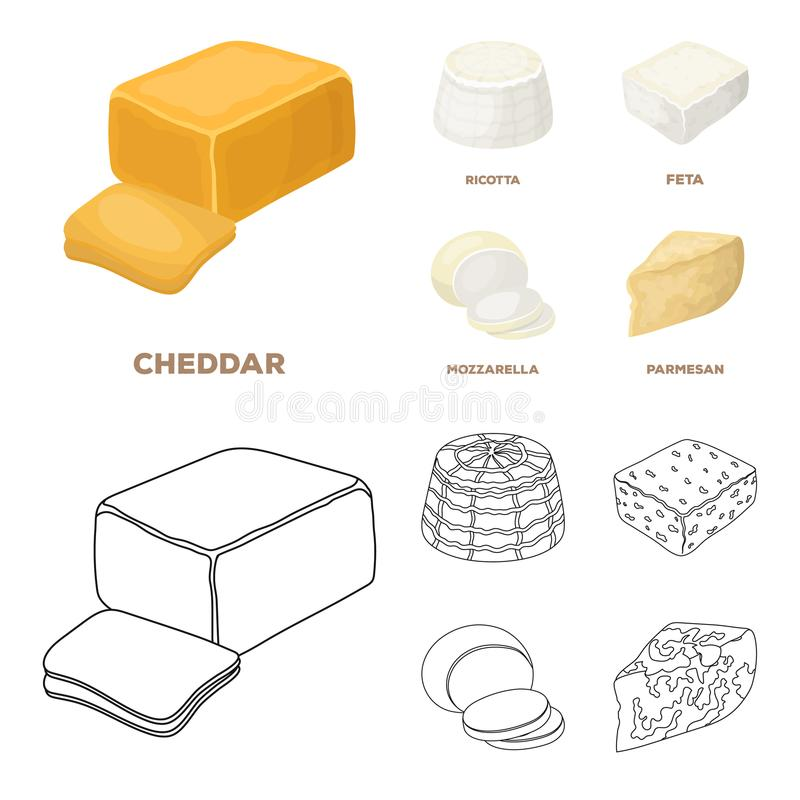 Mozzarella feta, cheddar, ricotta Olika typer av ost ställde in samlingssymboler i tecknade filmen, symbol för översiktsstilvekto stock illustrationer