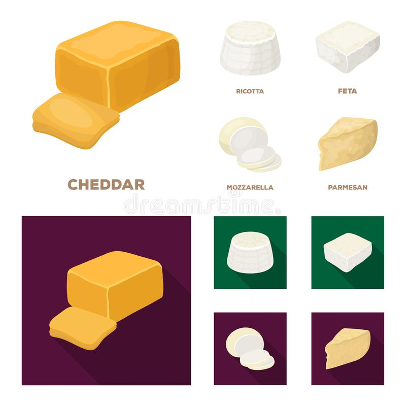Mozzarella feta, cheddar, ricotta Olika typer av ost ställde in samlingssymboler i tecknade filmen, symbol för lägenhetstilvektor vektor illustrationer