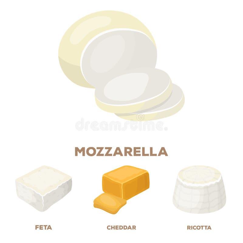 Mozzarella feta, cheddar, ricotta Olika typer av symboler för ostuppsättningsamling i materiel för symbol för tecknad filmstilvek royaltyfri illustrationer