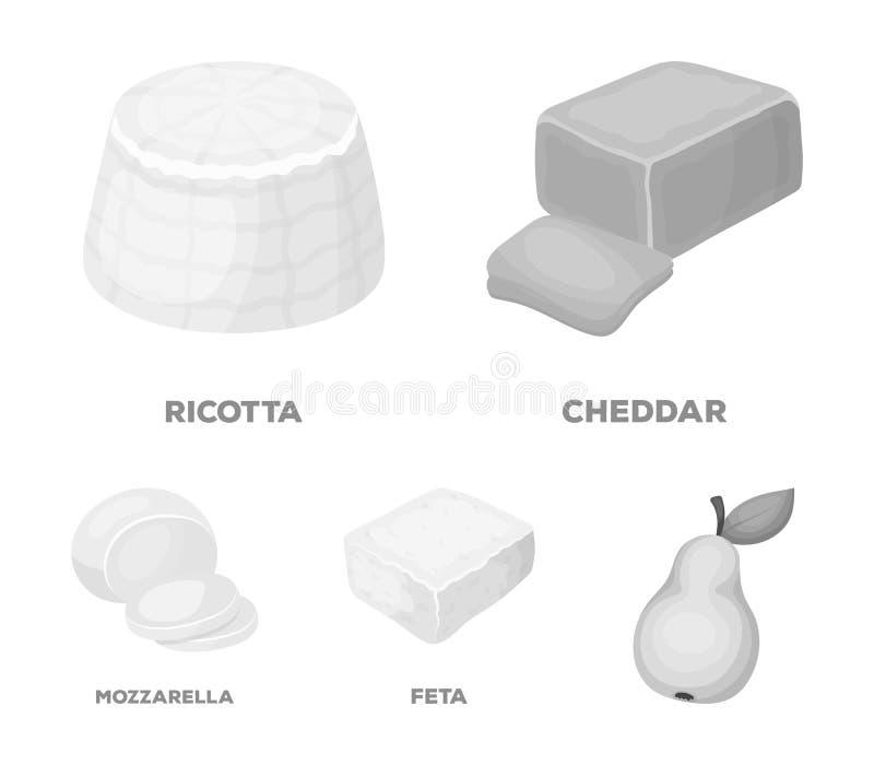 Mozzarella feta, cheddar, ricotta Olika typer av symboler för ostuppsättningsamling i monokromt stilvektorsymbol royaltyfri illustrationer