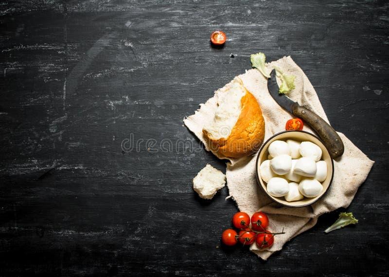Mozzarella med nytt bröd, tomater och gräsplaner royaltyfri bild