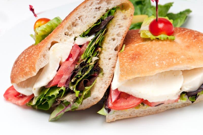 Mozzarella-Sandwich lizenzfreie stockfotos