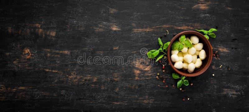 Mozzarella ser w glinianym talerzu obrazy stock