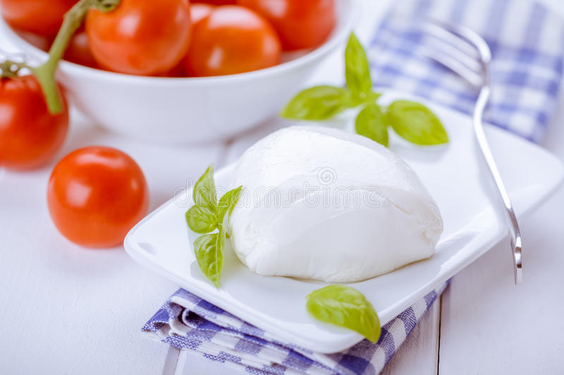 Download Mozzarella and Tomatoes stock photo. Image of gastronomy - 28731534