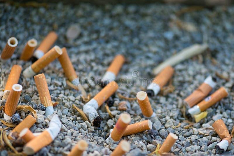 Mozzocons von den Zigaretten zerquetscht im Sand lizenzfreie stockfotografie