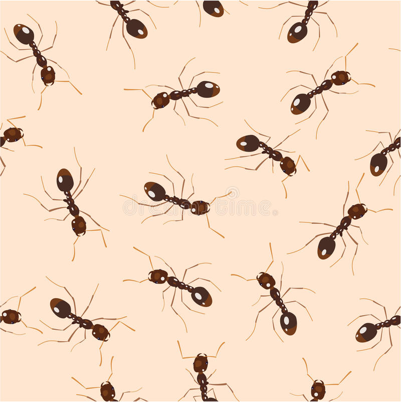 mrówki ilustracja wektor