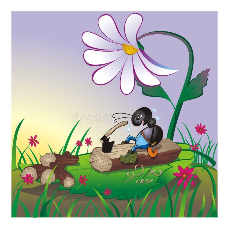 Mrówki ciapania zmęczona łupka przy wieczór obraz stock