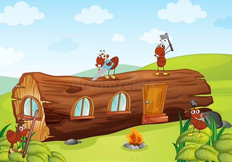 Mrówki i drewniany dom ilustracji