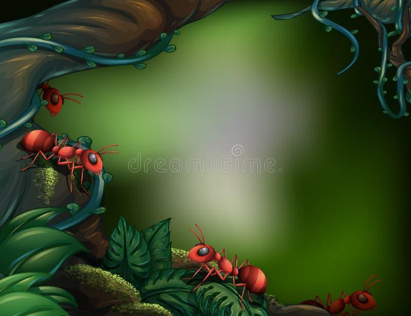 Mrówki przy lasem tropikalnym ilustracja wektor