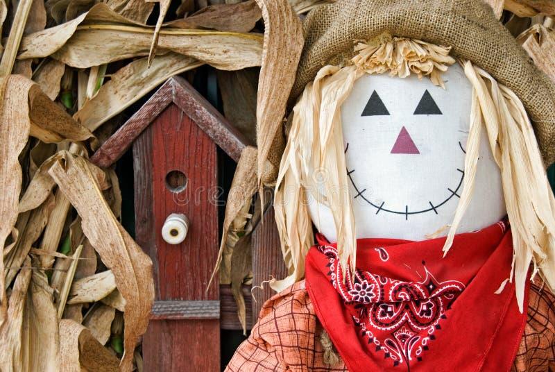 Mr. Scarecrow stock photo