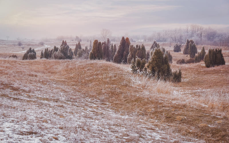 mroźna krajobrazowa zima zdjęcia stock