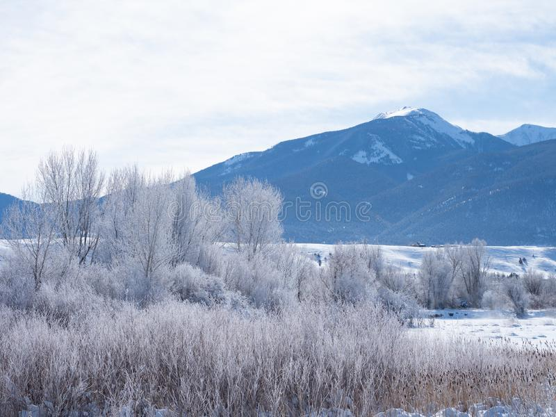 Mro?na raj dolina w Montana zdjęcia royalty free