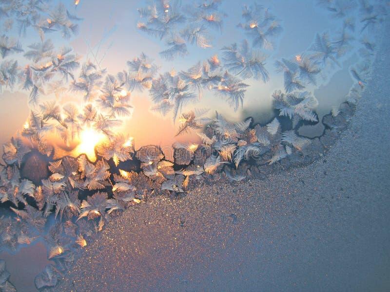 mrozowy tła słońce obrazy royalty free