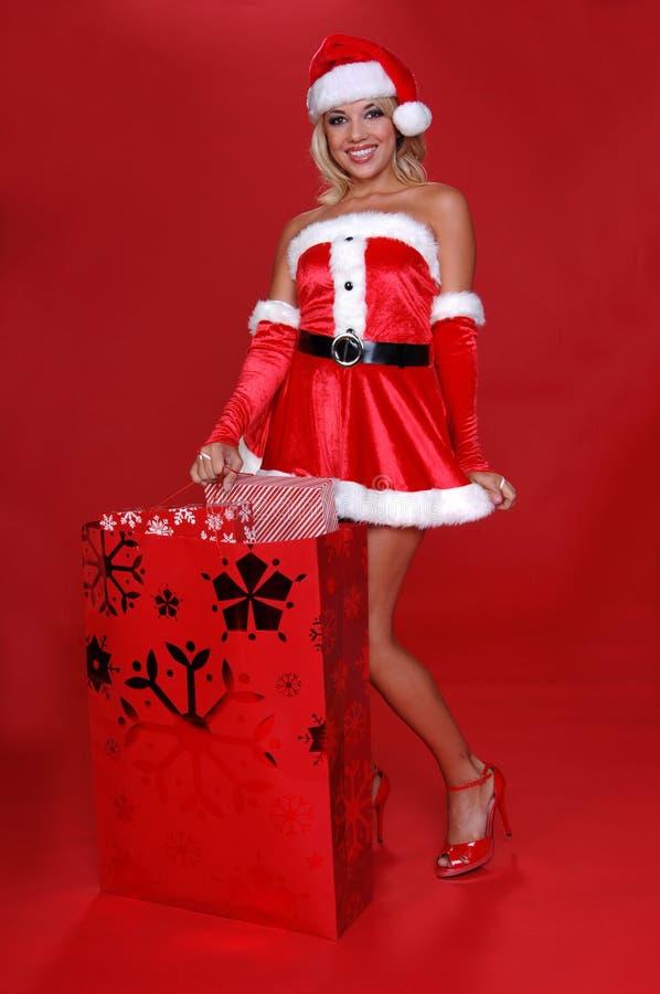 Mrs Sankt Christmas Bag stockbilder