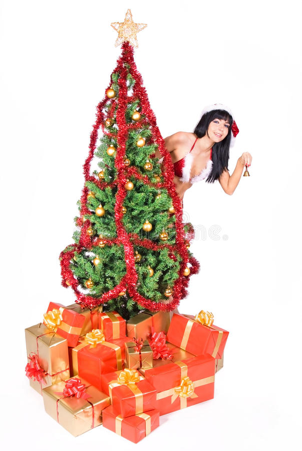 Download Mrs. Santa stock photo. Image of hold, package, girl - 21904814