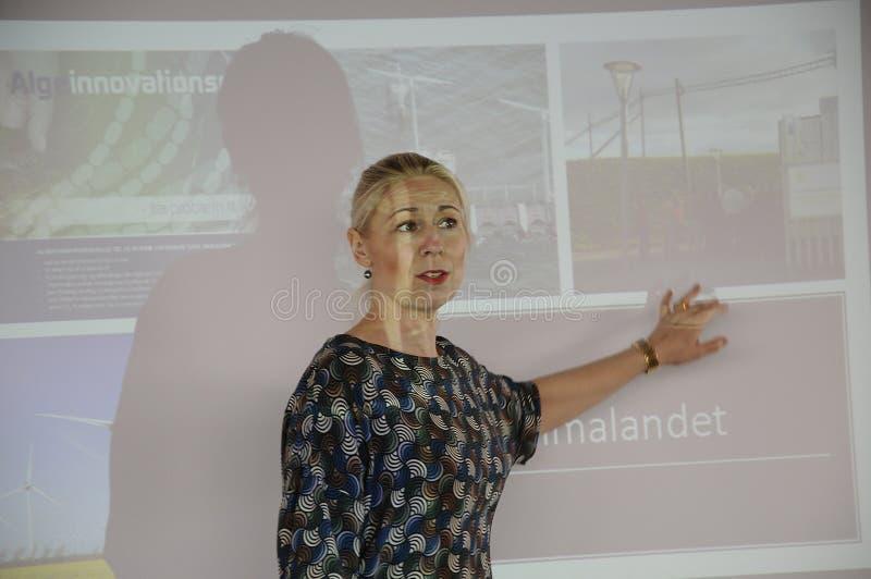 Ms MARIA L M FRIDERIHSEN_VISITLOLLAND - FALSTER obraz stock