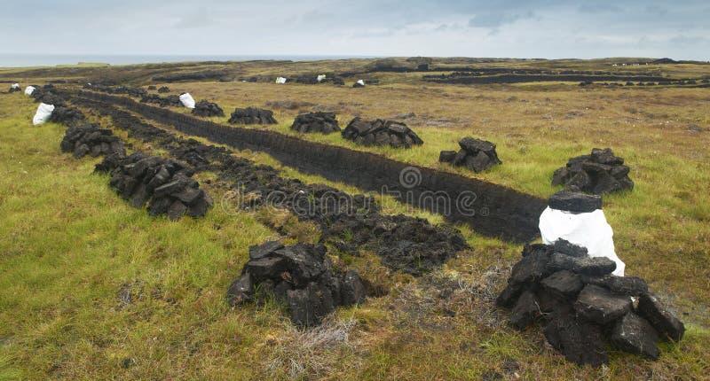 Mszarnik w ziemi Lewis wyspa cholery UK fotografia royalty free